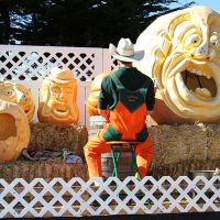 Farmer Mike carving a giant gourd