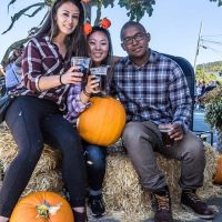 Pumpkin Harvest Ale with friends
