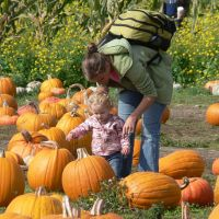 Picking a pumpkin with mom